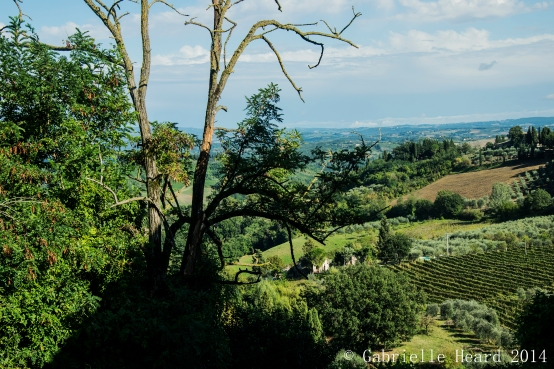 San Gimignano, From Above Part II
