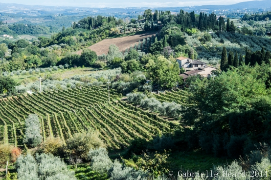 San Gimignano, From Above