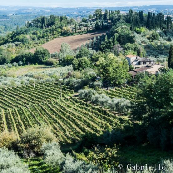 San Gimignano, From Above